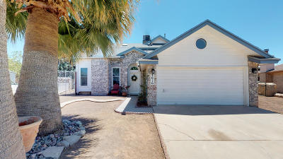 Vista Del Sol Single Family Home For Sale: 3016 Silver Lake Place