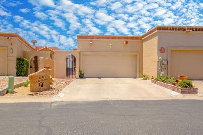 El Paso Condo/Townhouse For Sale: 11234 Enid Wilson Lane
