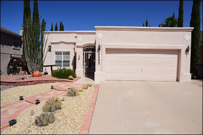 Vista Del Sol Single Family Home For Sale: 1361 James Dudley Drive