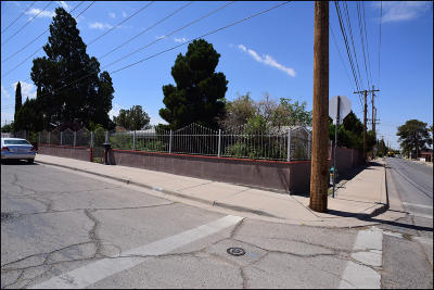 El Paso Single Family Home For Sale: 9000 Mount Carmel Avenue