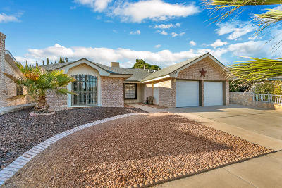 Vista Del Sol Single Family Home For Sale: 11317 David Carrasco Drive