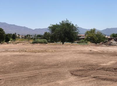 Single Family Home For Sale: 6102 Via De Los Arboles