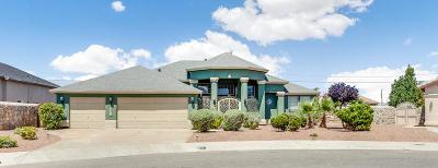 Canutillo Single Family Home For Sale: 7371 Del Sol Way