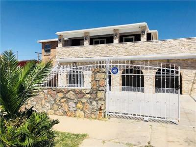 El Paso Multi Family Home For Sale: 9012 Matterhorn Drive