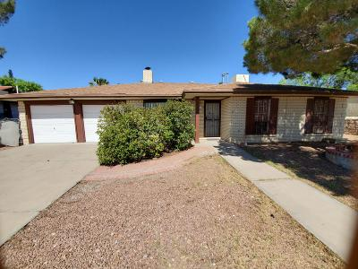 Vista Del Sol Single Family Home For Sale: 1817 Dale Douglas Drive