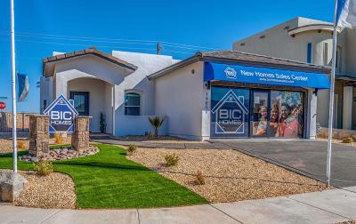 Single Family Home For Sale: 13804 Villa Vista Avenue
