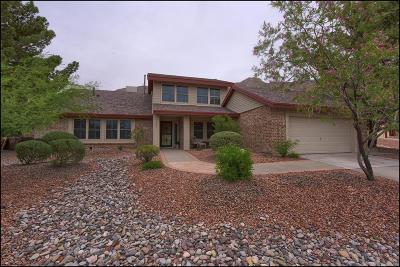 El Paso Single Family Home For Sale: 509 Regency Drive