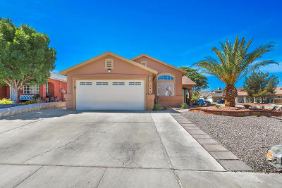 Vista Del Sol Single Family Home Pending Accepting Offers: 1300 Angel Wings Ct Court