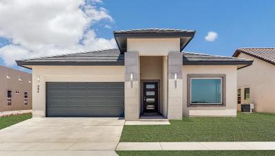 Horizon City Single Family Home For Sale: 984 Stamfordham