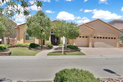 El Paso Single Family Home For Sale: 1229 Calle Lago Drive