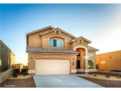 Single Family Home For Sale: 14900 Tierra Haven Avenue