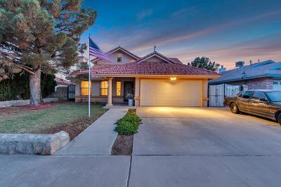 Vista Hills Single Family Home For Sale: 11636 John Weir Drive