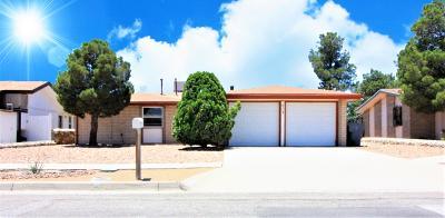 El Paso Single Family Home For Sale: 713 Nita Fay Drive