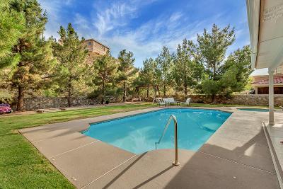 El Paso Single Family Home For Sale: 6788 Copper Ridge Drive