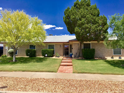 Single Family Home For Sale: 10467 Janway Drive