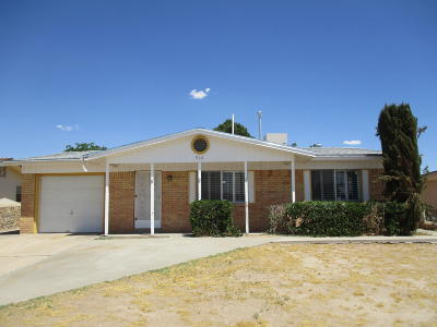El Paso Single Family Home For Sale: 910 Sunflower Lane