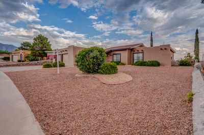 Chaparral Park Single Family Home For Sale: 6704 Camino Fuente Drive