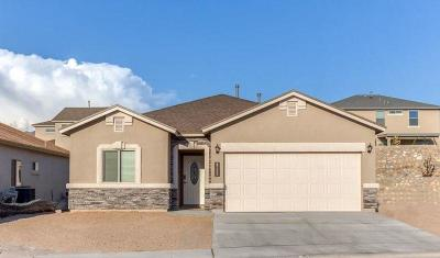 Single Family Home For Sale: 14905 Tierra Crystal Avenue
