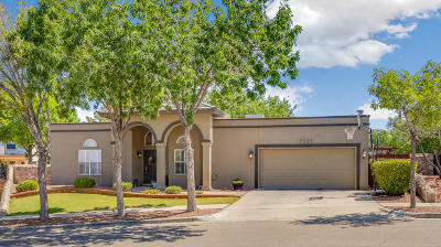 El Paso Single Family Home For Sale: 1369 Desert Canyon Drive