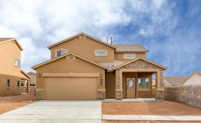 Single Family Home For Sale: 14725 Tierra Haven Avenue
