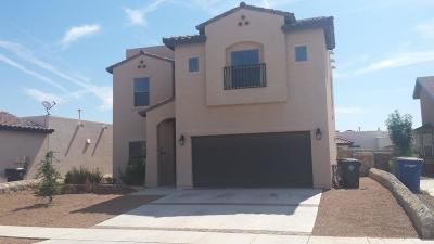Single Family Home For Sale: 3160 Sarina Circle