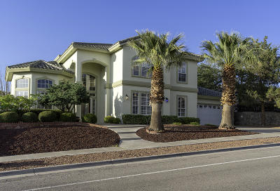 Ridgeview Est Single Family Home For Sale: 1143 Eagle Ridge Drive