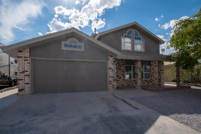 El Paso Single Family Home For Sale: 7757 Luz De Camino Way