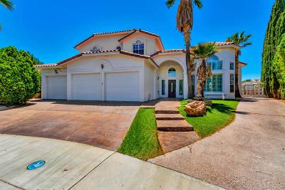 Vista Hills Single Family Home For Sale: 2010 Paseo Del Prado Drive