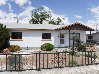 Single Family Home For Sale: 244 S Clark Drive