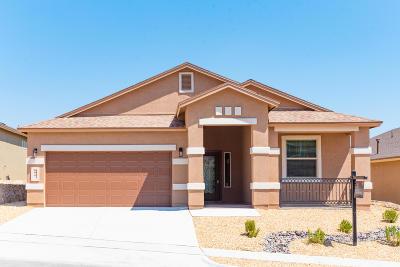 Single Family Home For Sale: 124 S Manzanita Drive