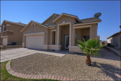Emerald Park Single Family Home For Sale: 13210 Emerald Glen Street