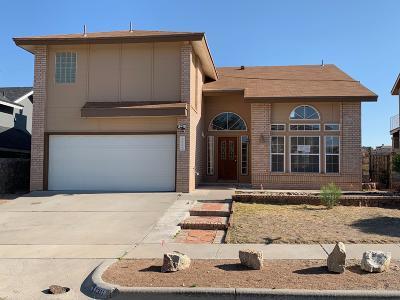 El Paso Single Family Home For Sale: 7311 Luz De Lumbre Avenue