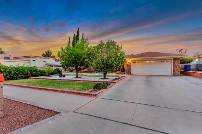 El Paso Single Family Home For Sale: 717 Brisa Del Mar Drive