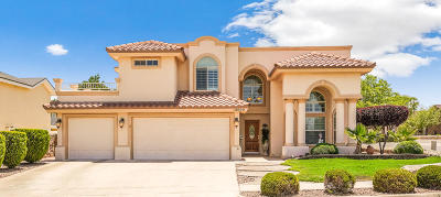 Single Family Home For Sale: 12600 Sun Flare Drive