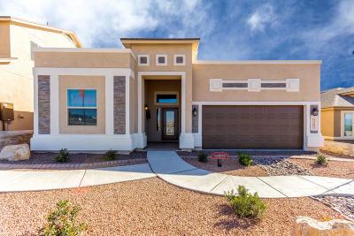 Single Family Home For Sale: 216 S Manzanita Drive