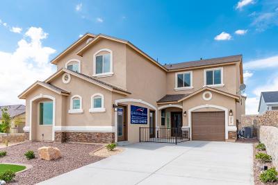 Single Family Home For Sale: 220 S Manzanita Drive
