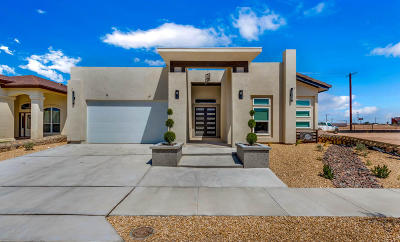 Single Family Home For Sale: 3137 Tunnel Point Way