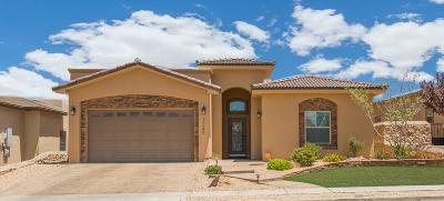 Single Family Home For Sale: 7245 Canyon Wren Avenue