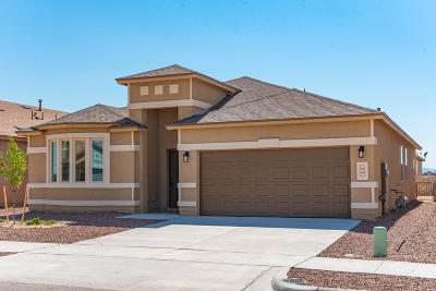 Single Family Home For Sale: 125 N Manzanita Drive