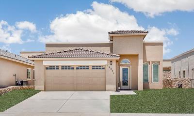 Horizon City Single Family Home For Sale: 13675 Everingham Street