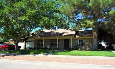 El Paso Single Family Home For Sale: 4117 Siete Leguas