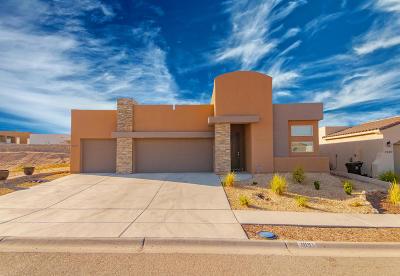 Sunland Park Single Family Home For Sale: 1091 Iron Hill Avenue