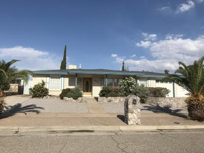 Vista Del Sol Single Family Home For Sale: 1416 Pintoresco Dr Drive