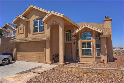 El Paso Single Family Home For Sale: 6009 Palmdale Street