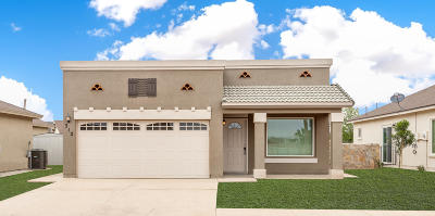 El Paso Single Family Home For Sale: 13569 Tynemouth Street