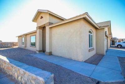El Paso Single Family Home For Sale: 14226 Charles Pollock Avenue