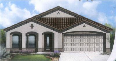El Paso Single Family Home For Sale: 13558 Sproatley Street