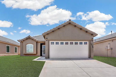 El Paso Single Family Home For Sale: 12428 Chamberlain Drive