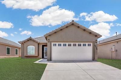 El Paso Single Family Home For Sale: 14909 Harry Flournoy Avenue