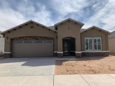 El Paso Single Family Home For Sale: 14239 Peyton Edwards Avenue